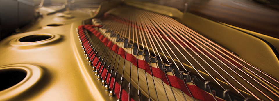 PFF_sliderMontage_harp